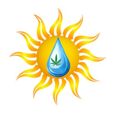Plain Jane Logo.png