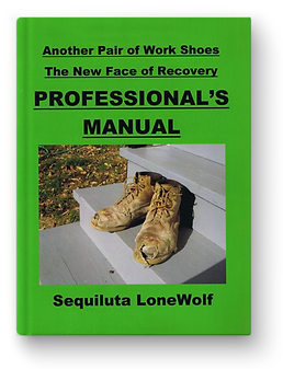 Professional's Manual