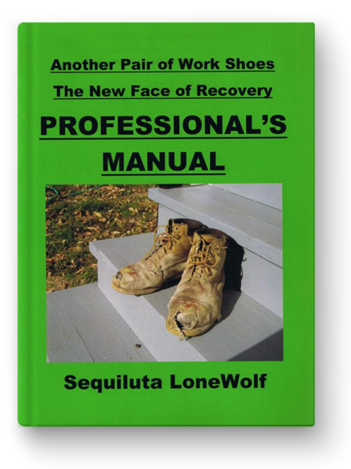 The PROFESSIONAL'S MANUAL for the self-help WORKBOOK - eBook