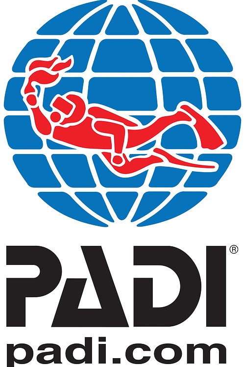 PADI Discover Snorkeling Experience