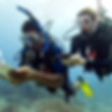 Adventure and Advanced Diver Course Forms