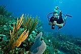 Deep Scuba Diver Course