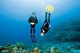 Peak Performance Buoyacy Scuba Diver Course