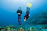 Peak Performance Buoyacy Scuba Diver Course