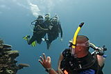 Divemaster Training Course