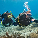 Specialty Diver Course Forms