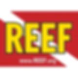 Reef Environmental Education Foundation