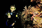Night Scuba Diver Course