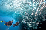Adventure Scuba Diver Course