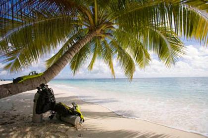Custom Dive Travel Reservations