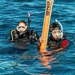 Delayed Surface Marker Buoy Scuba Diver Course