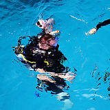 Divers%20Down%20Under!__Divers%20submerg