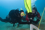 Search and Recovery Scuba Diver Course