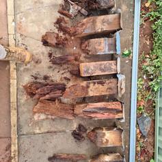 Wood Rot House Stumps Perth
