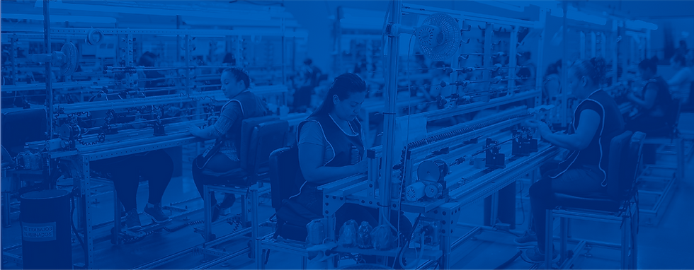 workers_blue_photo.png