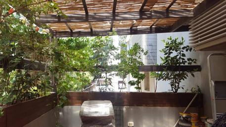 מרפסת קטנה ושופעת ירוק מוצל בשינקין