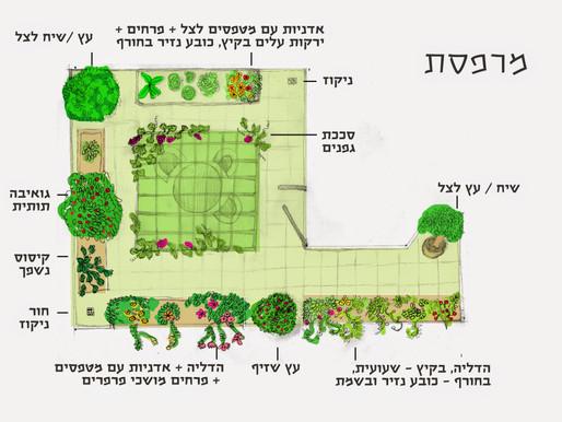 תכנון גינה, או: סוף מעשה במחשבה תחילה