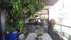 ניסוי אבוקדו במרפסת
