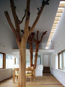 Projet d'extension de bureaux Batiment ossature bois Référence d'aménagement intérieur