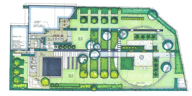 Création d'un jardin contemporain autour d'un cèdre bicentenaire Plan