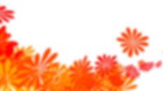 MelbourneCupflower_image 2.jpg