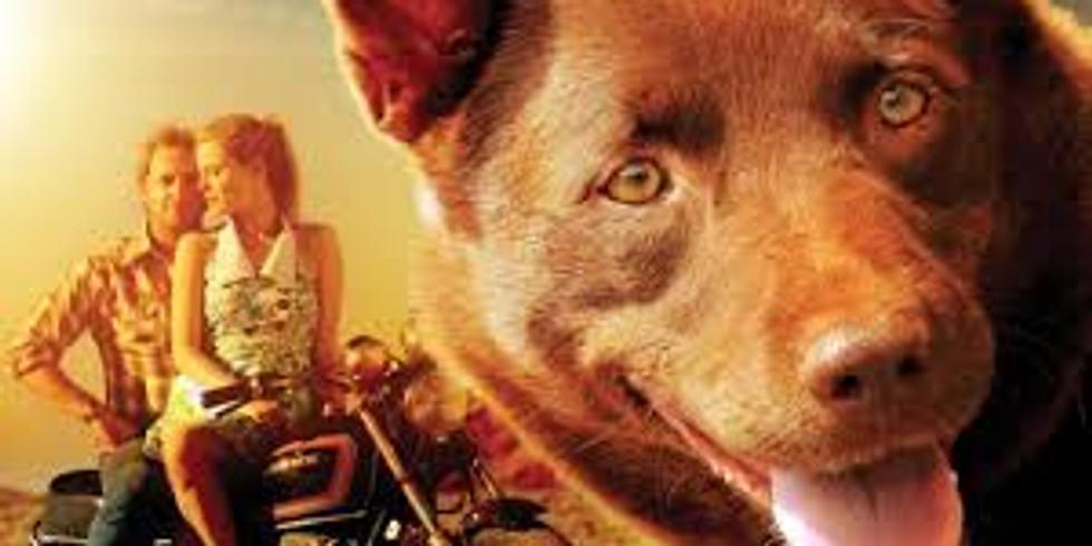 Deckchair Cinema - Red Dog