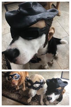 Bandit Bain and his posse- Sunshine & Rue