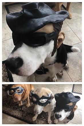 Bandit Bain and his posse- Sunshine & Ru