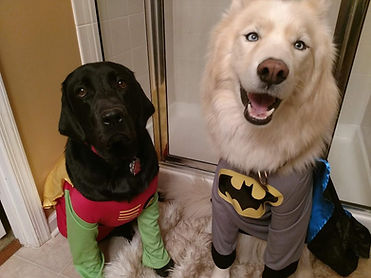Titan and Samson Ford - Howl-o-ween Cont