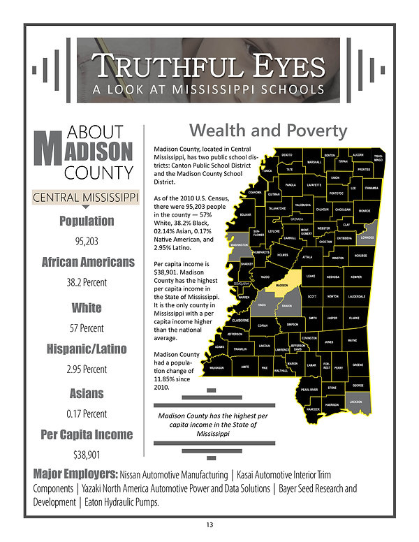 TruthFul Eyes Report _Madison County Link Page.jpg