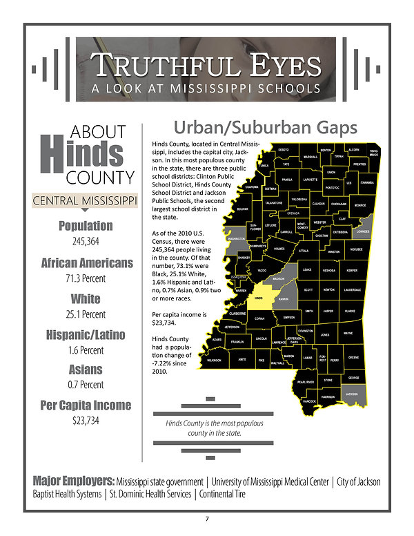 TruthFul Eyes Report _Hinds County Link Page.jpg