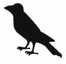 dawson raven.png