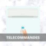MINIA TELECOMMANDES.png