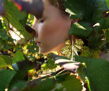 Pendientes hojas OK.jpg
