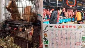 REFLEXIONES COVID19 IX: LA CRISIS DE LA INSOSTENIBILIDAD DEL MADE IN CHINA