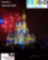 Demi marathon Disney.jpg