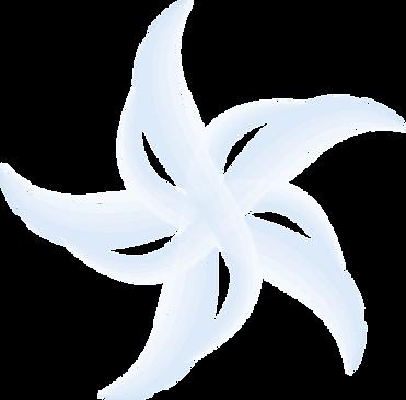 Logo Becker.png