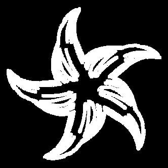 logo_becker_white_Zeichenfläche_1.png