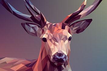 deer-3275594_960_720[1].jpg