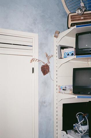 T.VCross4.jpg