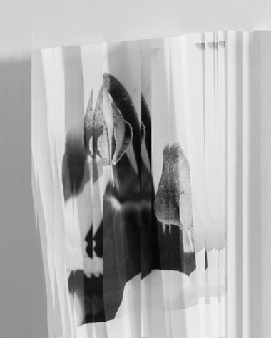 GiacomoColombo-AlternateTakes-08.jpg