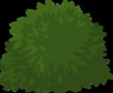 67-678326_shrub-clipart-grass-clip-art-b