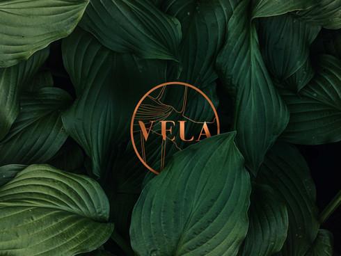 Vela_home_02.jpg