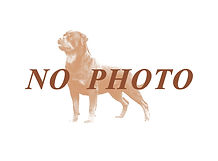 nofoto.jpg