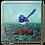 Thumbnail: Red Winged Wren Original Oil Painting