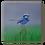Thumbnail: Papa Blue Original Oil Painting
