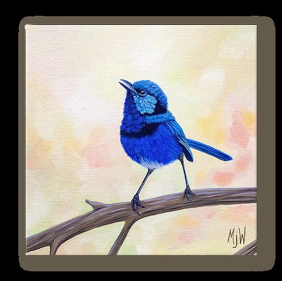 Fairy Wren Original Oil Painting
