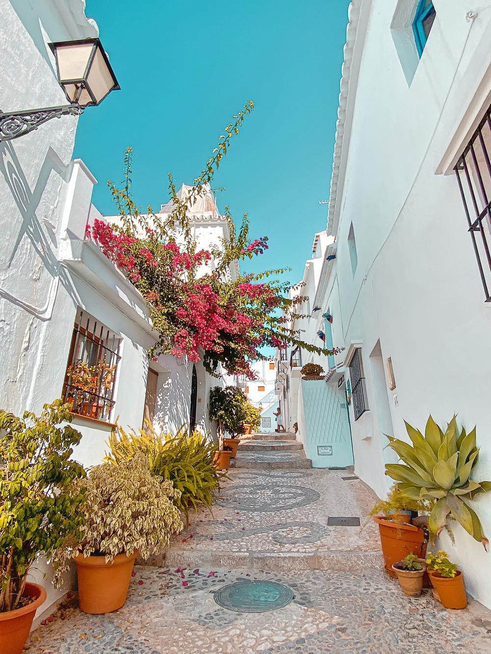 Frigiliana, flores, callejón, pueblo blanco, Andalucía