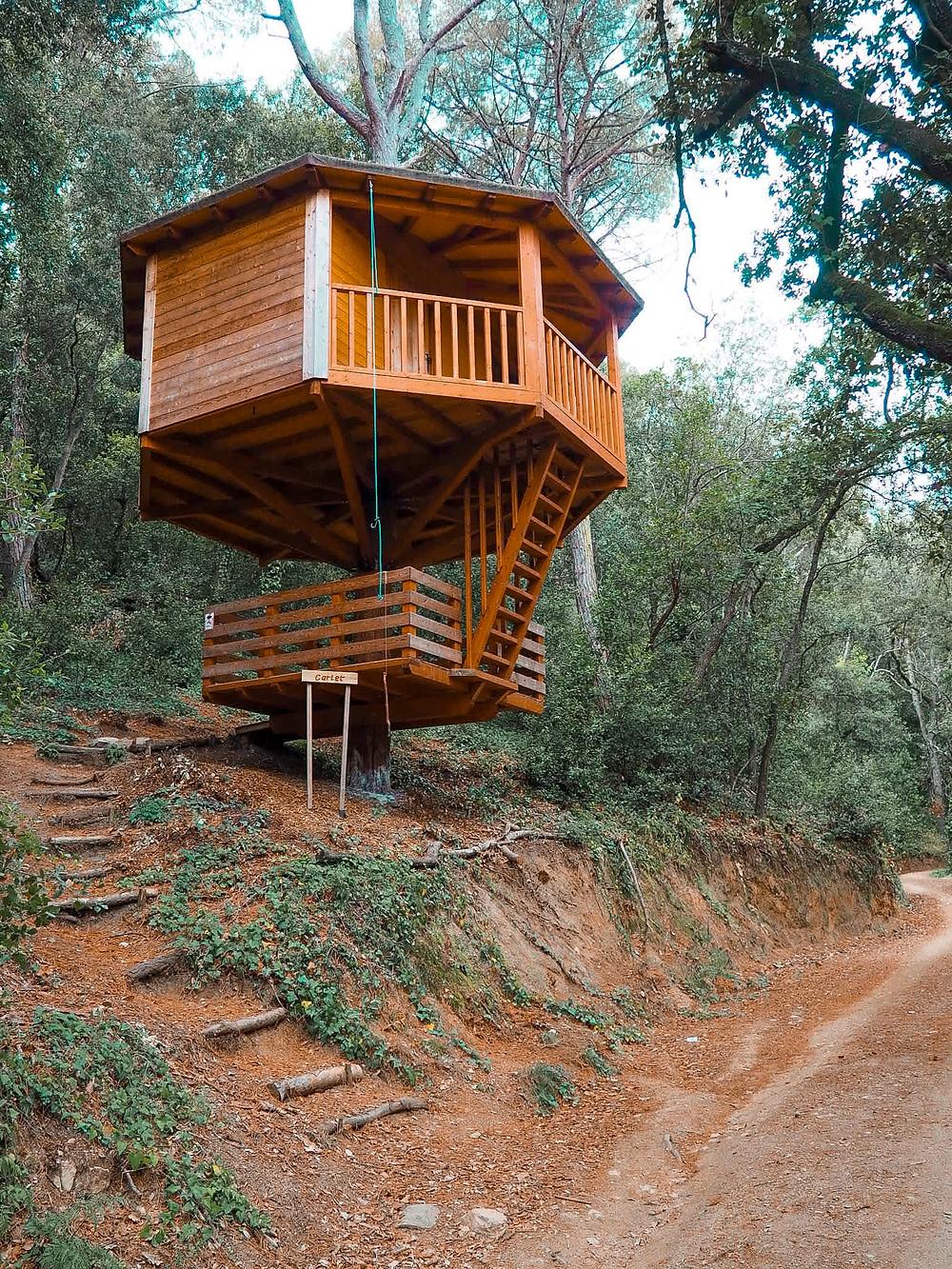 cabaña, naturaleza, bosque, madera