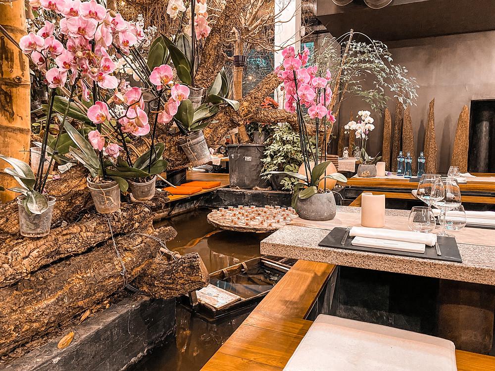 restaurante asiático, decoración, gastrocuento, selva, estanque